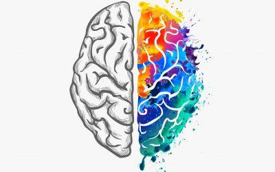 Het anti-Alzheimer programma